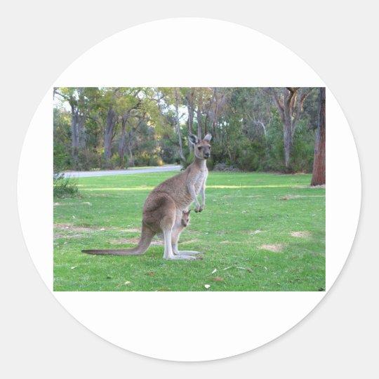 Kangaroo and Joey Classic Round Sticker