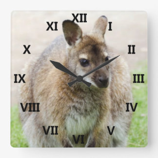 Kangaroo Art Square Wall Clock