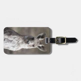 Kangaroo Bag Tag