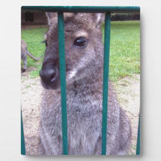 Kangaroo behind bars plaque