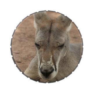 Kangaroo Candy Tin