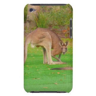 kangaroo iPod touch cases
