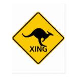 Kangaroo Crossing Highway Sign Postcard