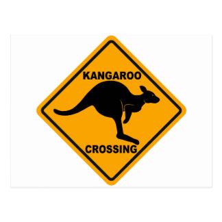 Kangaroo Crossing Sign Postcard
