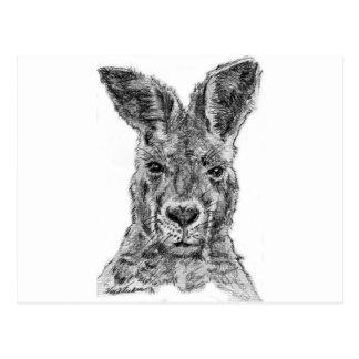 kangaroo gday mate postcard