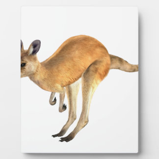 Kangaroo Hopping Plaque