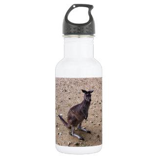 Kangaroo Looking at the Camera 18oz Water Bottle