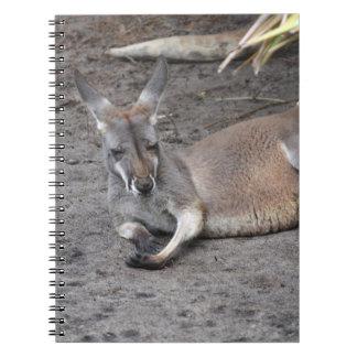 kangaroo lying down eyes closed animal spiral notebook