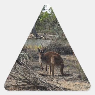 Kangaroo, Mean While At The Billabong, Triangle Sticker