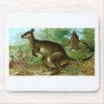 Kangaroo Mouse Pad
