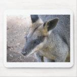 Kangaroo Mousepads