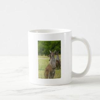 Kangaroo Paddock Classic White Coffee Mug