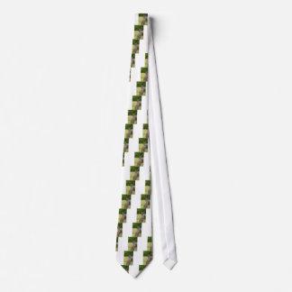 Kangaroo Paddock Tie