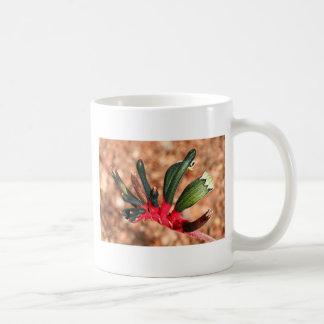 Kangaroo paw Australian flower in bloom Mugs