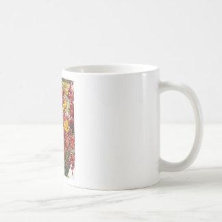 Kangaroo Paw Coffee Mug