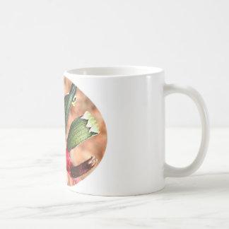 Kangaroo paw  flower in bloom (oval) coffee mug