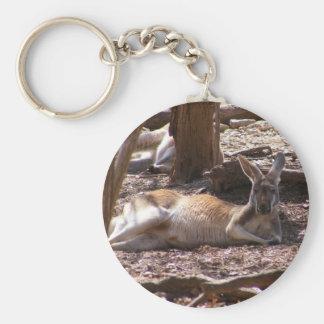 Kangaroo Picnic Keychains