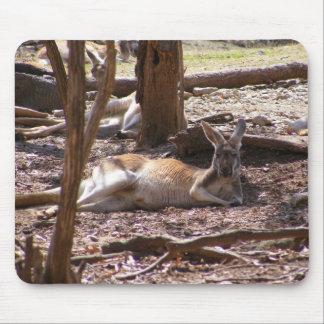 Kangaroo Picnic Mouse Pads