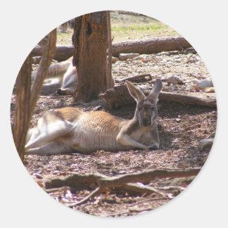 Kangaroo Picnic Round Sticker