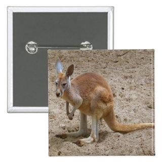 Kangaroo Pinback Button