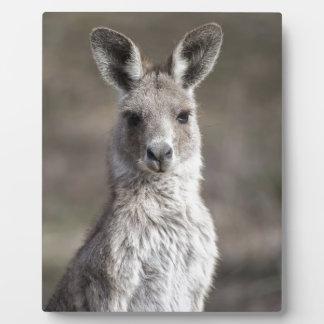 Kangaroo Display Plaque