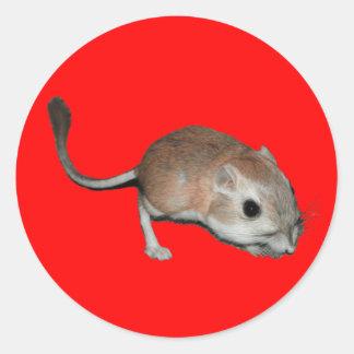 Kangaroo rat classic round sticker