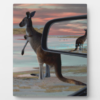 Kangaroo Sea Breezes Illusion Art, Plaque