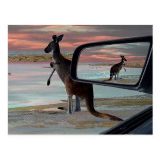 Kangaroo_Sea_Breezes, _ Postal