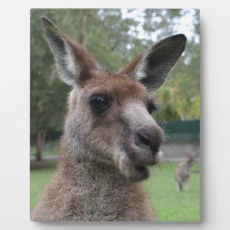 Kangaroo selfie plaque