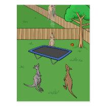 Kangaroo Trampoline Bounce Postcard