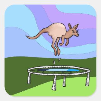 Kangaroo Trampoline Square Sticker