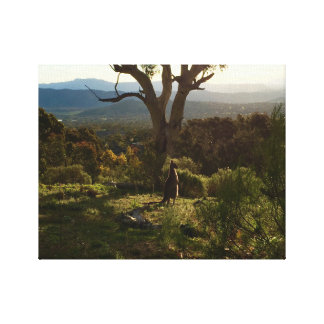 Kangaroo watching over Canberra Canvas Print