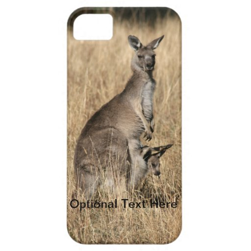 Kangaroo with Baby Joey in Pouch iPhone 5 Cases