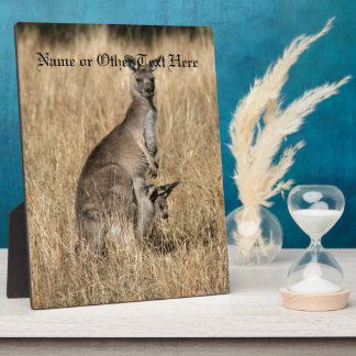 Kangaroo with Baby Joey in Pouch Display Plaques