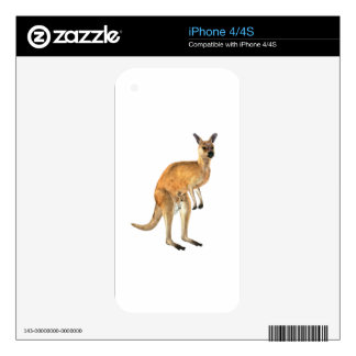 Kangaroo with Baby Joey iPhone 4 Decals