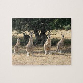 Kangaroos in a Row Jigsaw Puzzles