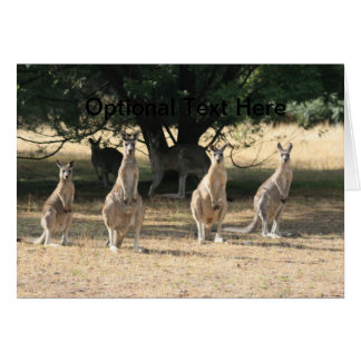 Kangaroos in a Row Stationery Note Card