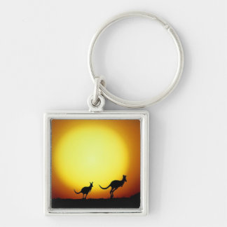 Kangaroos in the Australian Outback Keychains