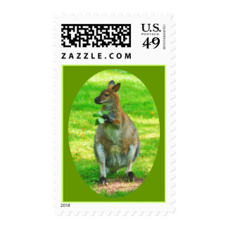 Kangaroos with oaks leaves stamps