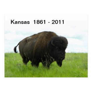 Kansas 1861 - 2011 postcard