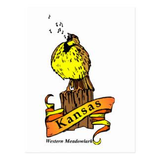 Kansas Bird Postcard