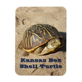 Kansas Box Shell Turtle MAGNET!!! Magnet