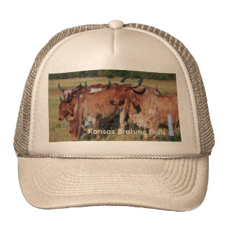 Kansas Brahma Bulls Trucker Hat