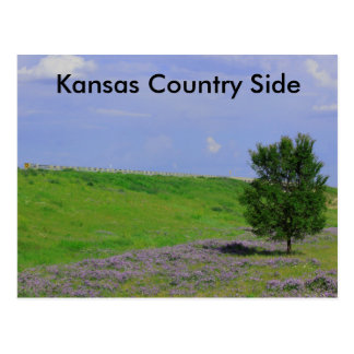 Kansas Country Side Post Card