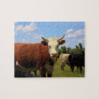 KANSAS COW'S Puzzle