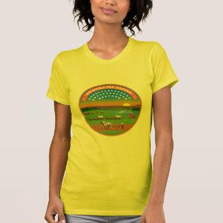 Kansas Flag Theme 01 T Shirts