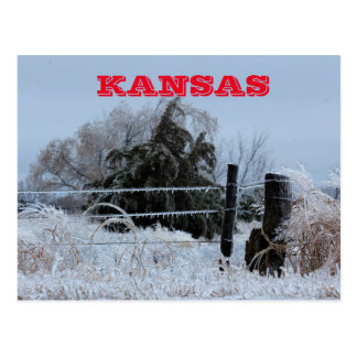 Kansas Icy Fence Post Card