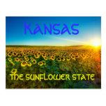 """Kansas """"la postal de State del girasol"""