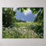 Kansas Meadows and Wildflowers Print
