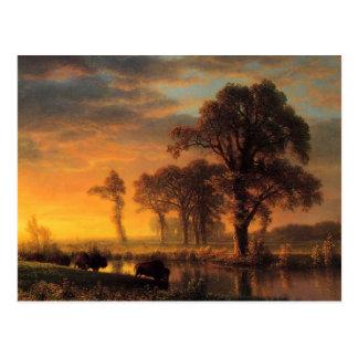 Kansas occidental de Albert Bierstadt Postales